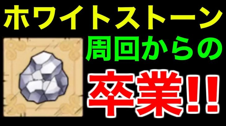 【ドラクエタクト】ホワイトストーン周回からの卒業!戦闘力ランキング60位【ドラゴンクエストタクト】