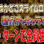 【ドラクエタクト】全員生存攻略!ぬかどこスライムロード7!2パターン〜第29章〜