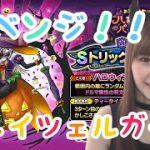【ドラクエタクト】ハロウィン!トリックグレイツェルガチャ37連!【女性ゲーム実況者】
