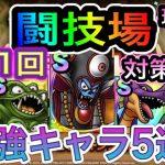 【ドラクエタクト】 第1回 『闘技場』 強キャラ5選