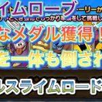 【ドラクエタクト】バブルスライムロード8攻略仲間を一体も倒されずにクリア 小さなメダル、スライムローブ獲得