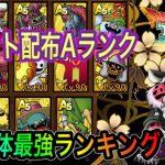 【ドラクエタクト】 イベント配布Aランク全15体 『最強ランキング』