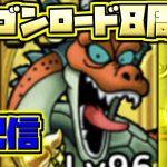 【ドラクエタクト】バトルロード8!ドラゴンロード8!才能開花するガメゴンロードを生配信で育成!!!【ドラゴンクエストタクト】【DQT】