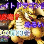 【ドラクエタクト】開花の扉23巻グレイトドラゴン攻略