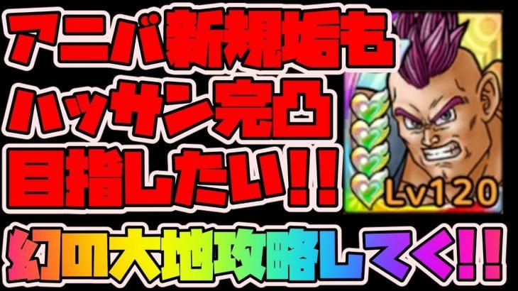 【ドラクエタクト】アニバ新規垢もハッサン完凸したい!幻の大地ベリハ攻略していく【ドラゴンクエストタクト】【DQT実況】
