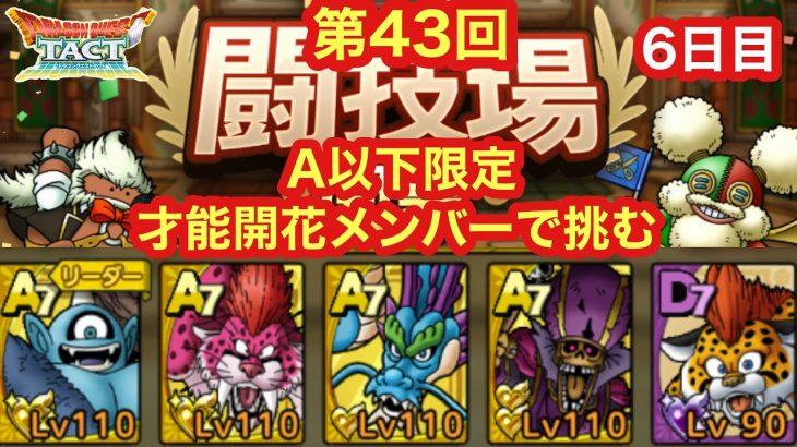 【ドラクエタクト】第43回闘技場6日目。タイガー系頂上決戦!vs ウイングタイガー!