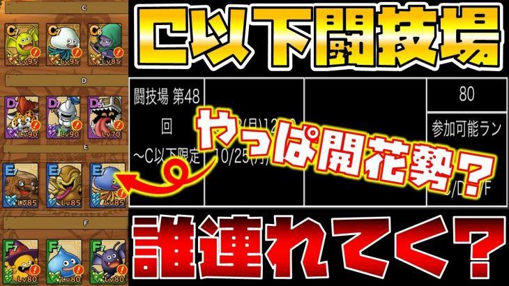 """【ドラクエタクト】明日から""""C以下限定闘技場""""オススメキャラは誰??"""